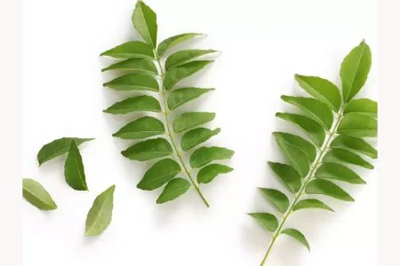 Curry leaves (one pack)